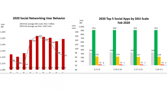 grafiek3 social networking china