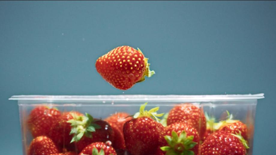 Aardbeien onder folie
