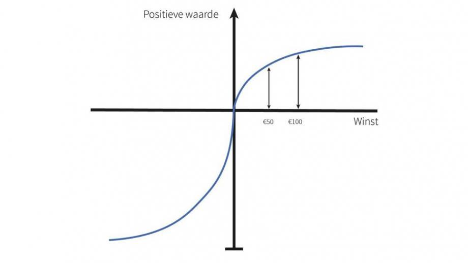 Prospect theory positieve grafiek