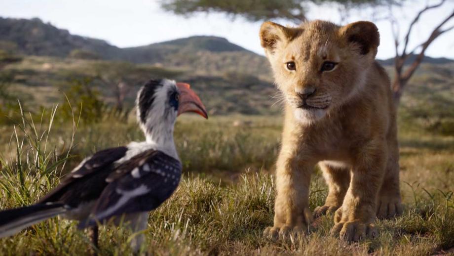 De nieuwe Lion King (net echt)