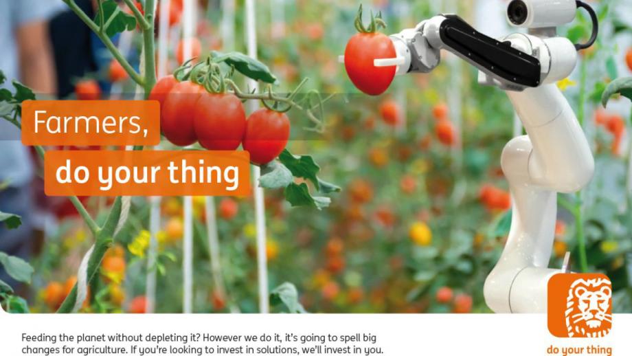 Tomatenpluk met robot, do your thing ING