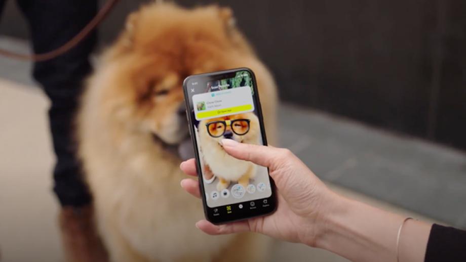 Snapchat's DogScan herkent 400 hondenrassen en vertelt je welke hondensoort je voor je hebt