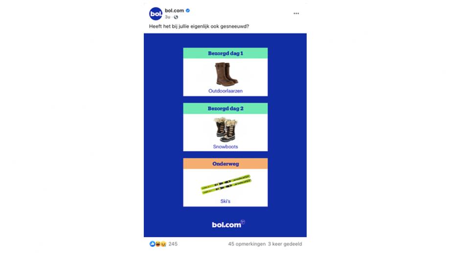 Bol.com Ski's