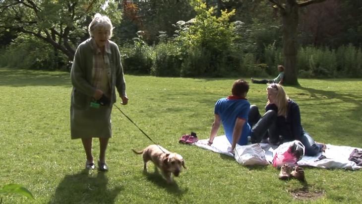 Nederlands hondenuitlaat-initiatief OOPOEH wint prijs