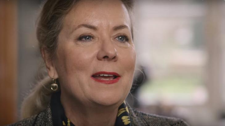 Angelique Paulussen, DSM