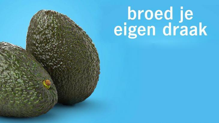 Avocado_AH