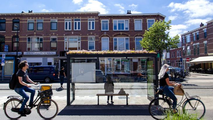 Groene abri in Utrecht