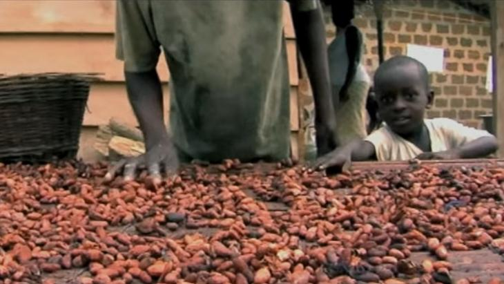 Doelstelling: uitbannen slavernij in de cacao-industrie
