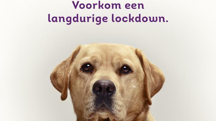 KNGF Geleidehonden lanceert donatiecampagne 'Lockdown'