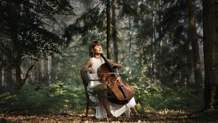 Het Nationaal Muziekinstrumenten Fonds: Gratitude