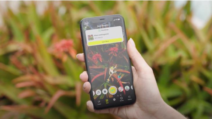Snapchat's PlantScan identificeert 90% van de bekende planten en bloemensoorten op de wereld