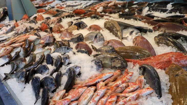 Verse vis, maar is het duurzaam?