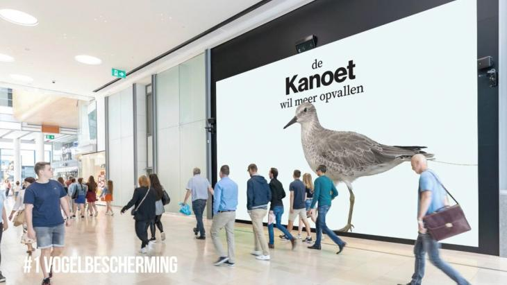 Winnaar Non-Profit: Vogelbescherming en KesselsKramer