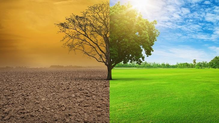 Motivaction lanceert de Klimaatwijzer
